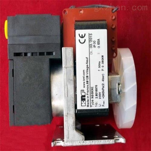 德国KNF气体分析仪抽气泵 仪表