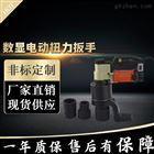 SGDD钢结构数显式电动定扭力扳手1000N.m价格