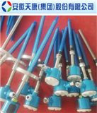 WZPK-141安徽天康PT100双支防爆型铠装铂热电阻