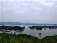 重庆市风电装备产业技术创新取得重大成效