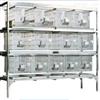 JV222-RB42-12不锈钢干养式实验兔笼库存 库号:M59100